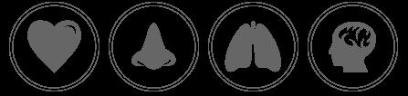 Nosk es el filtro nasal que bloquea la contaminación