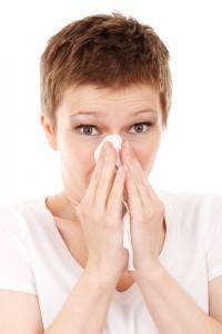 la olivera provoca alergia