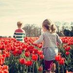 la alergia infantil no es hereditaria