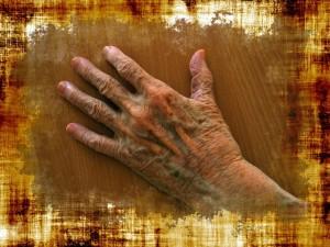 La alergia en las personas mayores