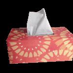 la alergia en diciembre