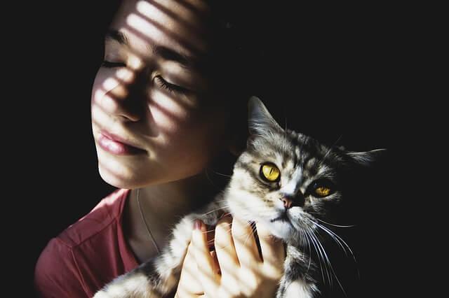 alergia al gato y al perro