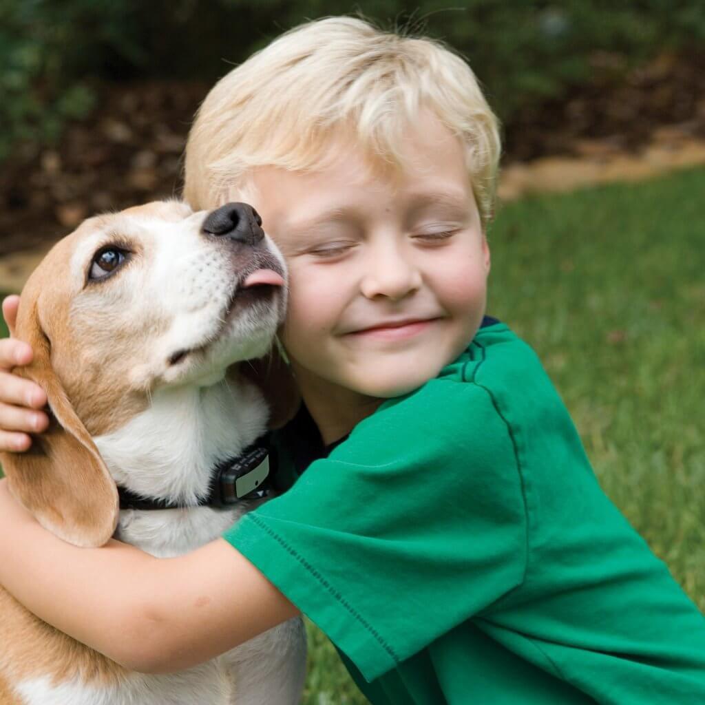 Alergia a los perros en niños