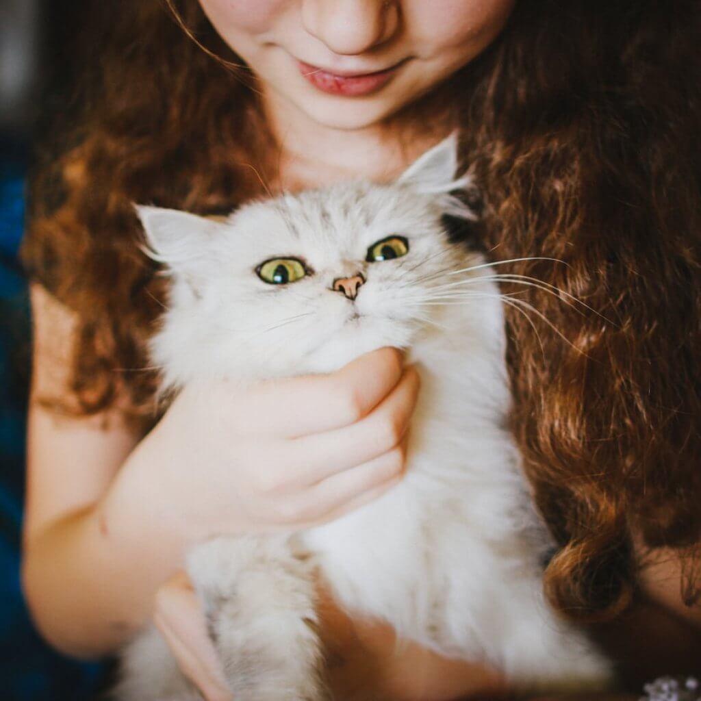 Alergia a los gatos en niños